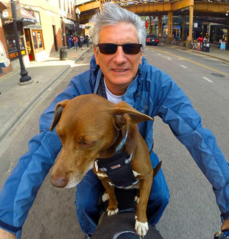 Kevin Motorcycle Dog